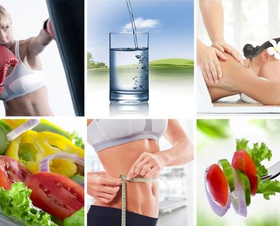 Nutricion Vida Saludable